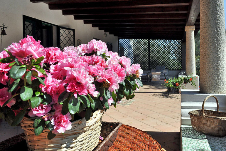 "Bed and Breakfast  ""I Re"" Casaregiaddoni-4.jpg"