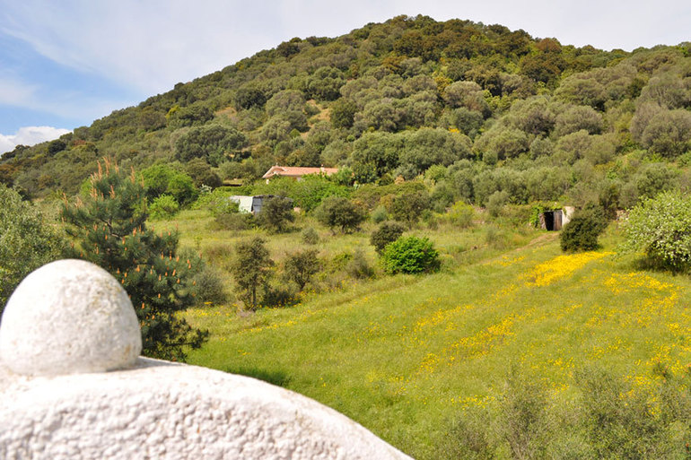 "Bed and Breakfast  ""I Re"" Casaregiaddoni-8.jpg"