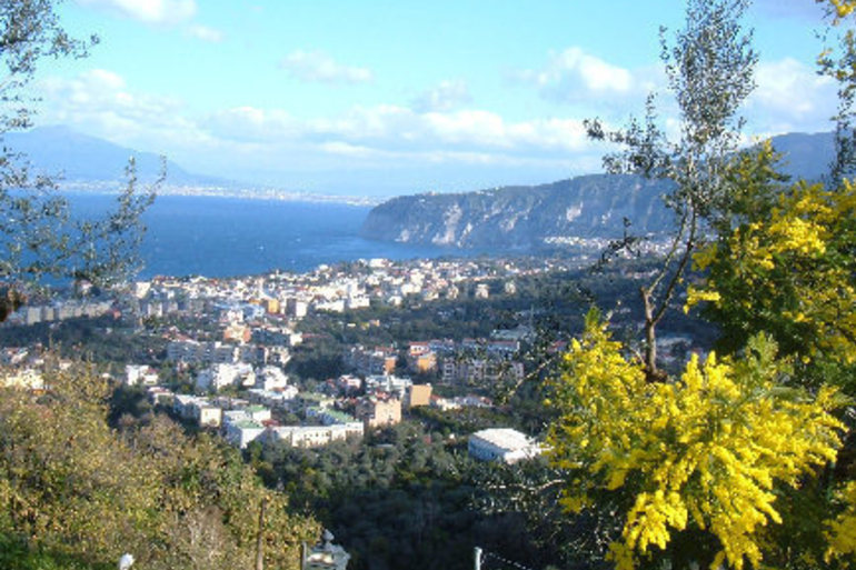 Normal_sorrento_foto_1